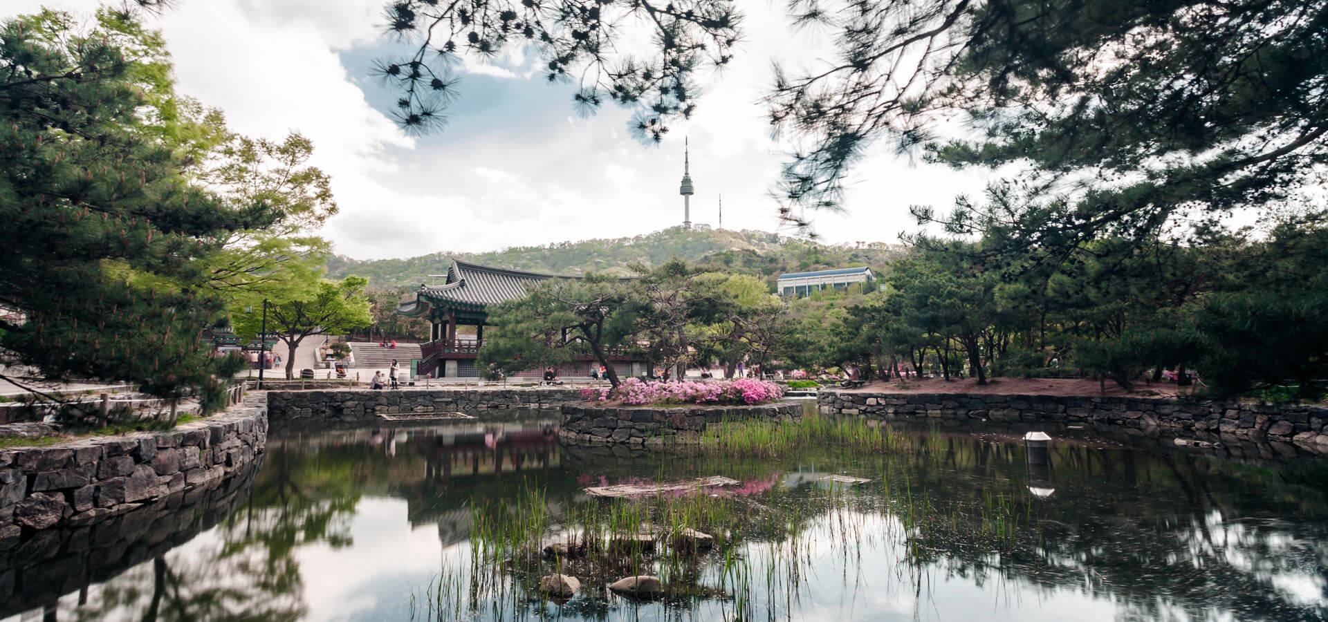 seoul-namsan-village-spring